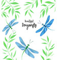 Dragonflies in flight vector image