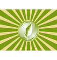 ecology flag vector image vector image