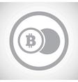 Grey bitcoin coin sign icon vector image