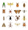 Colorful Insects Icons Collection vector image