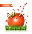 Red fresh tomato on the grass fragment vector image
