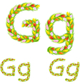 font type letter G made from flower tulip vector image