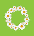 spring round frame with blooming chamomile vector image