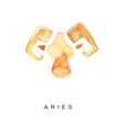 aries zodiac sign part of zodiacal system vector image