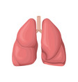 structure of the human lungs concept of vector image