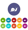 Snail set icons vector image