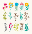 floral elements in doodle style vector image