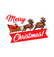 santa with gift and reindeer sleigh greeting card vector image