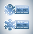 Winter sale labels with snowflake vector image vector image