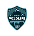 hiking expedition vintage isolated badge vector image