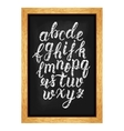 Chalk hand drawn latin calligraphy brush script of vector image