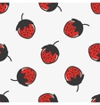 Hand drawn seamless pattern with strawberry fruit vector image
