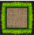 Eco frame vector image
