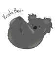 Koala bear isolated on white background vector image