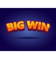 Big Win banner for online casino poker roulette vector image