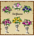 Different flowers bouquets in antique vases vector image