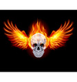 Flaming Chrome metal Skull wings fair 01 vector image