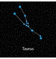 Taurus Zodiac sign bright stars vector image