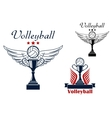 Volleyball icon with trophy and winged ball vector image