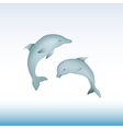 Jumping dolphins vector image