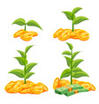 startup growth concept tree growing on a vector image
