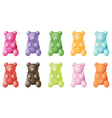 Gummy bears vector image