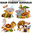 Different kind of rainforest animals vector image