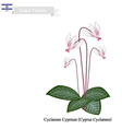 Cyclamen Cyprium The National Flower of Israel vector image