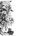 Hand drawn seamless floral border vector image