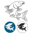 fish barbel vector image