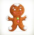 Gingerbread man icon vector image