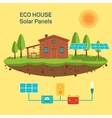 eco green house vector image