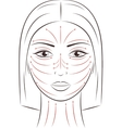 Female face Massage lines vector image