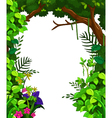 beauty green forest vector image vector image