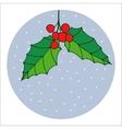 Traditional hand drawn christmas berry decoration vector image
