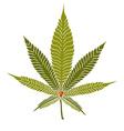 Cannabis2 vector image