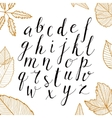 hand drawn alphabet Handwritten script vector image