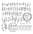 hand drawn line floral elements  big set vector image vector image