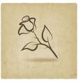 rose flower symbol vector image