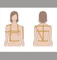 womens body measurements vector image vector image