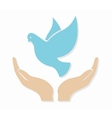 dove in hand logo or icon vector image