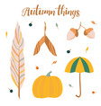 set of autumn things vector image