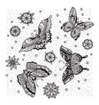 collection of butterfly and flower tattoo in old vector image