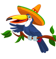 toucan sombrero vector image vector image