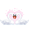 white swans in love vector image vector image