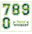 tropical numbers for t-shirts posters vector image