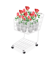 Red Roses in A Shopping Cart vector image vector image