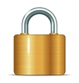 closed padlocks vector image