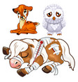 crying deer sad owl and sick horse animal vector image