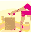 woman legs and accessories vector image vector image
